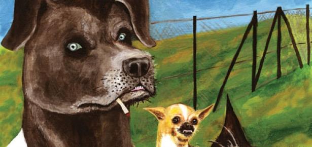 Doggie Boot Camp Reform School For Dogs Modern Dog Magazine