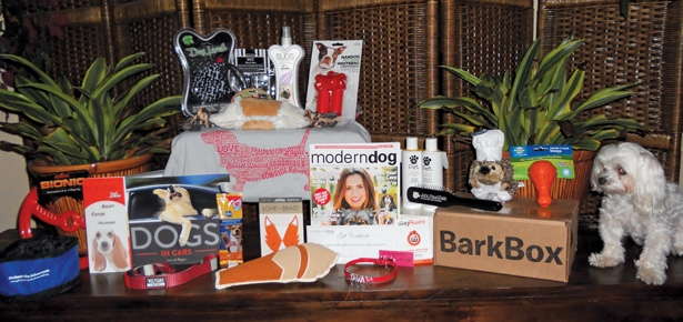 Win a Celebrity Gift Bag!