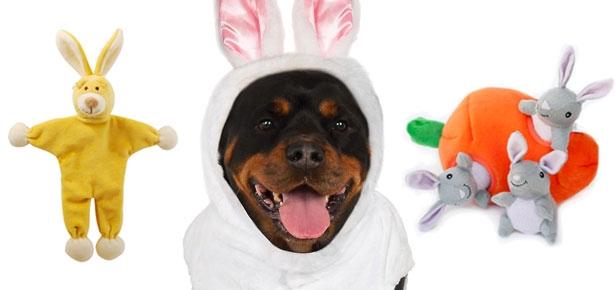 Header-Easter-Dog