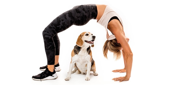 Your Best Workout Buddy Has Four Legs