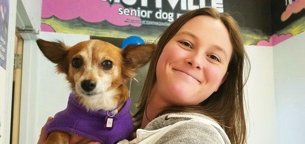 Senior Dog Resuce