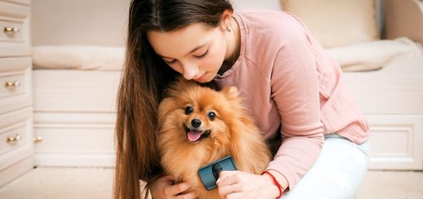 Dogs help teens