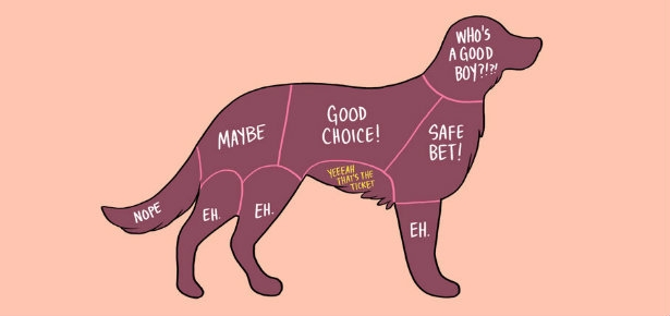 How to Pet a Dog Chart