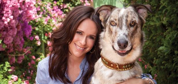 Jennifer Love Hewitt Modern Dog