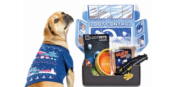 Get a Mystery Crate of Geeky Goodies for Your Dog