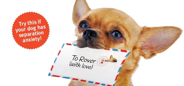 Send Your Dog a Mental Postcard