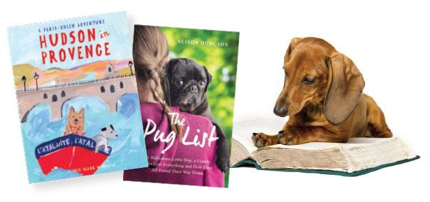 Top Dog Training Club Reading