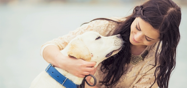 Do You Have the Same Personality as Your Dog?