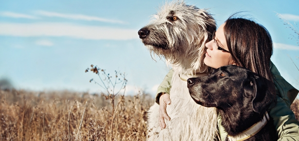 6 Things To Help You Through Pet Loss Grief