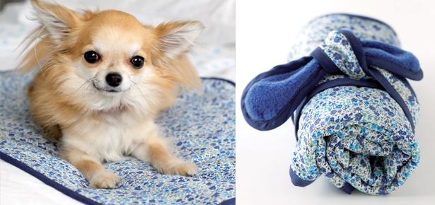 DIY Craft: Travel Blanket