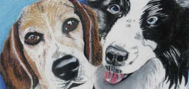 dog_friends_web.jpg
