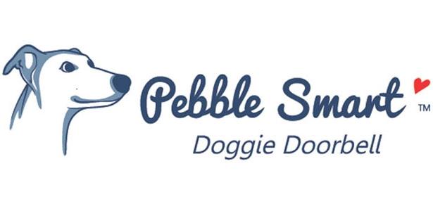 pebble smart