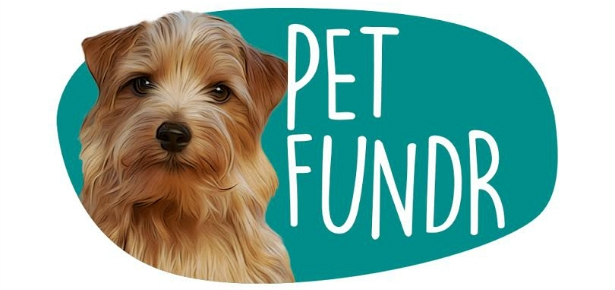 New Animal-Only Crowdfunding Site Funds Pet Projects