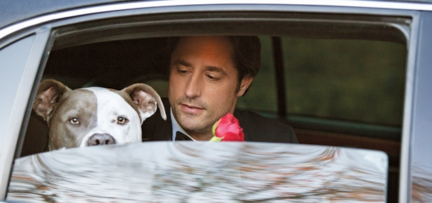 An Eligible, Dog-loving Prince—YES PLEASE!