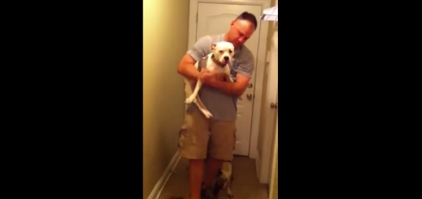 Paralyzed Pup Welcome Dad Home From Deployment