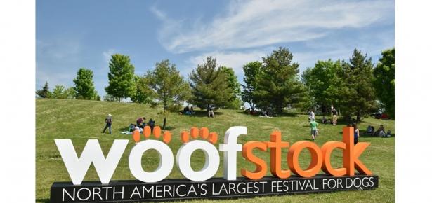 Woofstock Header