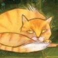 CatDogHousehold-sm.jpg