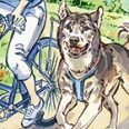 Dog Biking for Beginners
