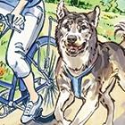 Dog Biking for Beginners