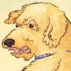 Doodle thumbnail