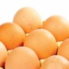HealthySnacksDogs-Eggs-sm.jpg