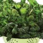 HealthySnacksDogs-Vegetables-sm.jpg