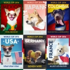 World Cup Pups
