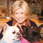 Martha+dogs_sm.jpg