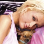 Paris Hilton's Beloved Dog Tinkerbell Dies at 14