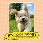 Enter Modern Dog's Star Dog Contest!