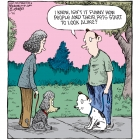 Dave Coverly
