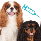 Does My Dog Really Need to be Vaccinated?