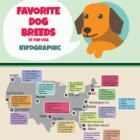 Favourite Dog Breeds in the USA infographic