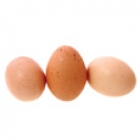 eggs_sm.jpg
