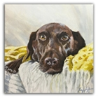 Painterly Pets