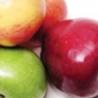 apples for dogs and top people foods that dogs can eat