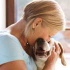 Why and When a Senior Should Adopt a Dog