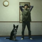 Dog Exercises With His Hooman
