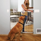 Pet Gate from Paw Seasons