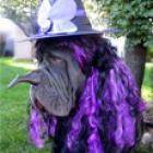 Halloween Costume Contest Winners