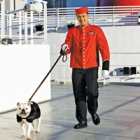 Win a $250 Gift Certificate towards a Transatlantic Cunard Cruise with Kennel Service.