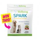 Pet Wellbeing