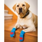 Win 1 of 8 sets of Power Paws advanced non-slip socks for dogs from Woodrow Wear