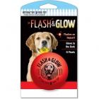 American Dog Toys Flash & Glow Ball