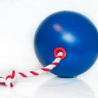 Teaser image of Tuggo dog toy, a one-of-a-kind tug-of-war toy for dogs