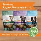 Rayne Rewards S.I.T.