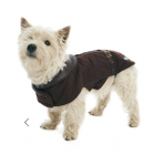 the perfect coat for Fall