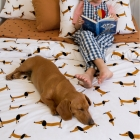 Dachshund Bedding