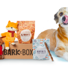 bark box coupon