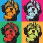 Canvas Pet Pictures